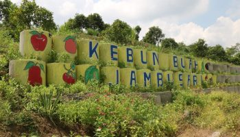 Agrowisata Jambusari